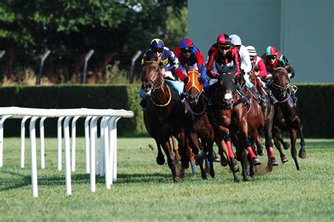 Horse Racing Awesome HD Wallpapers - All HD Wallpapers