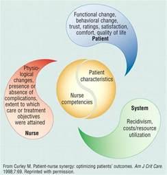 Synergy Model Nursing Theory