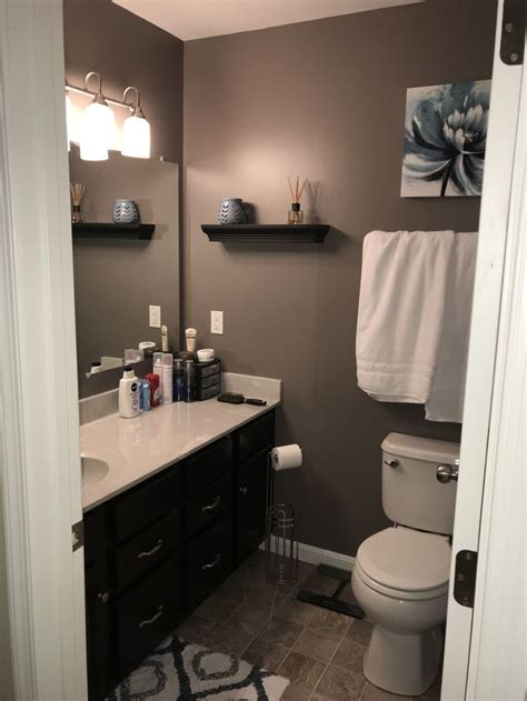 sherwin williams mink  small master bathroom