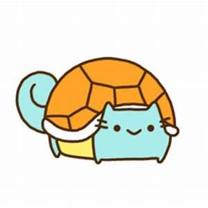 transparent cat squirtle cat gif | WiffleGif