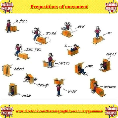 Prepositions Of Movement Picture  Learning English Vocabulary And Grammar  Basic English