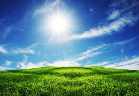 sunny field fields nature background wallpapers