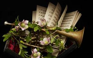 musical instruments and flowers Archives Lila B Design