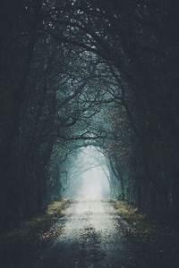 Schöne Momente Bilder : pin von lydia kiesling auf in the woods pinterest b cher spr che und buchzitate ~ Orissabook.com Haus und Dekorationen