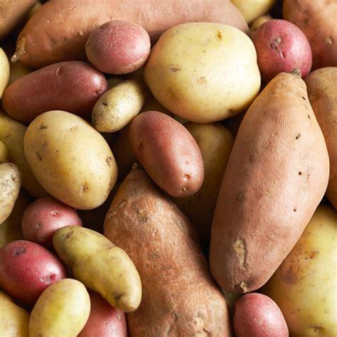 boiling yukon gold potatoes how how to boil potatoes