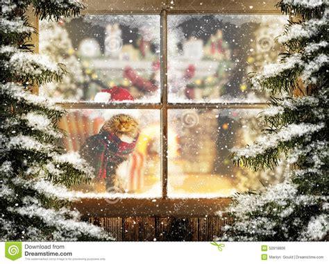 Weihnachtsdeko Fenster Stock by Weihnachten Cat Sitting Am Fenster Stockfoto Bild 50918806