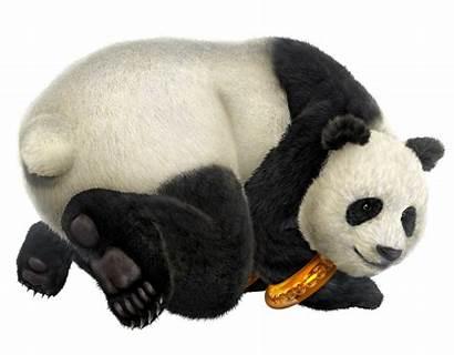 Panda Tekken Tekken6 Head Render Wiki Animaux