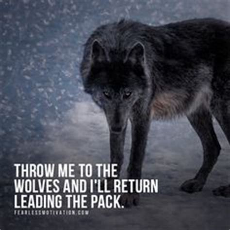 Alpha Wolf Wolf Pack Wallpaper by 24 Best Wolf Quotes Motivational Wolf Quote Images