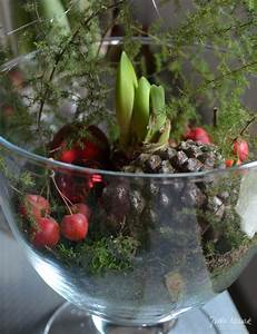 Amaryllis In Wachs : adventsausstellung 2015 jutta nowak ~ Lizthompson.info Haus und Dekorationen