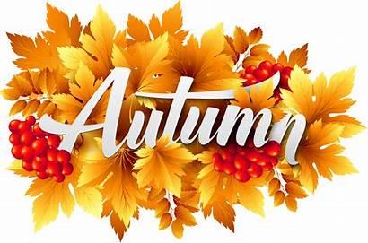 Autumn Clipart Fall Decorative Transparent Leaves Yopriceville