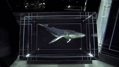 Looking Glass Display 3d Holographic Headgear Technology