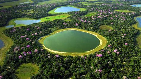 aerial pantanal bing wallpaper