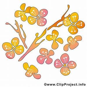 Bilder Blumen Kostenlos Downloaden : fruehling cliparts kostenlos blumen ~ Frokenaadalensverden.com Haus und Dekorationen
