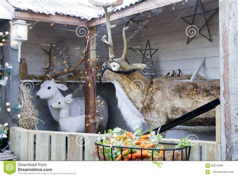 christmas reindeer display stock photo image 63314608