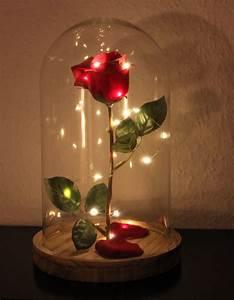 Schöne Bilder Kaufen : selbst gebastelte verzauberte rose aus die sch ne und das biest glasglocke von ernsting 39 s ~ Orissabook.com Haus und Dekorationen