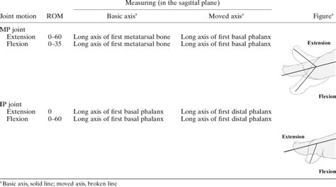 range of joint motion method of measuring and recording for the great toe