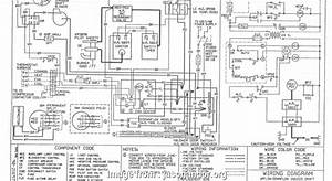 Siemens Thermostat Wiring Diagram Simple Micromaster