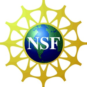 Image result for NSF