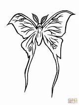 Moth Luna Coloring Silkworm Drawing Printable Clipart Drawn Supercoloring Getdrawings Games sketch template