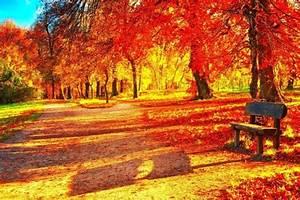 Fall, Season, Backgrounds, U00b7, U2460, Wallpapertag