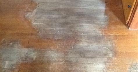 removing dog urine stains  hardwood floors hometalk