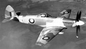 All-Aircraft-Si... Spiteful Fang