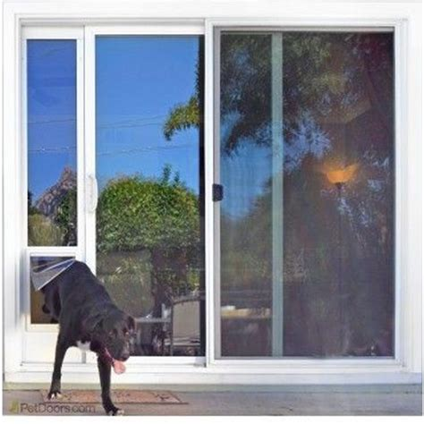 25 best ideas about pet door on rooms