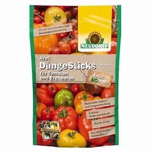 Bester Dünger Für Tomaten : azet d nge sticks f r tomaten und erdbeeren 40 st ck ~ Michelbontemps.com Haus und Dekorationen