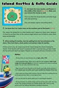 Animal Crossing New Leaf Fish And Insect Guide Zoshwikico