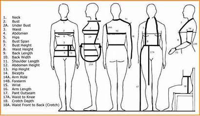 Measurements Take Measurement Sewing Form Chart Measuring