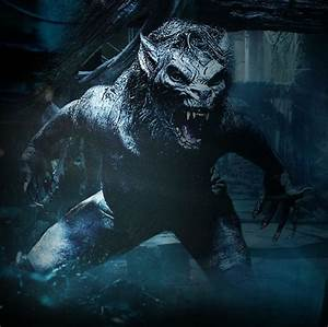 1000+ images about Werewolf Designs and Art on Pinterest