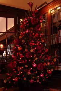 Geschmückter Weihnachtsbaum Fotos : ein rot geschm ckter weihnachtsbaum ~ Articles-book.com Haus und Dekorationen