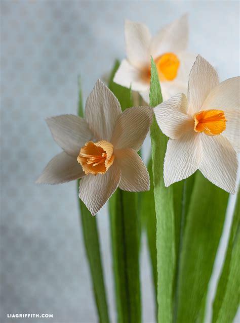 crepe paper daffodils lia griffith