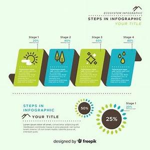 Infographics Vectors, Photos and PSD files   Free Download