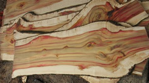 flame boxelder milled woodworking talk woodworkers forum