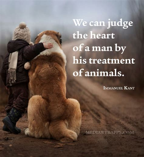 treatment  animals quotes quotesgram