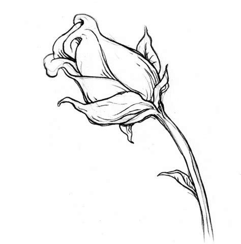 disegni a matita semplici ma belli disegni a matita facili cd06 187 regardsdefemmes