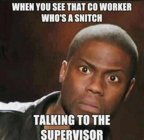 Coworker Meme - that snitch co worker random funny memes v6 season of the witch pinterest snitch funny