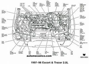 20ford Contour Engine Diagram 25792 Netsonda Es