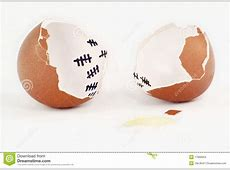 Egg Escape stock photo Image of hatch, release, shell
