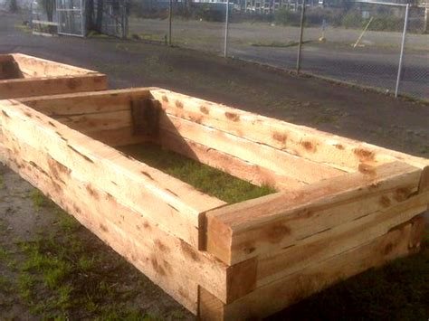 build raised garden beds  restoration juniper