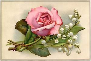 Vintage Rose Wallpaper Full Desktop Backgrounds