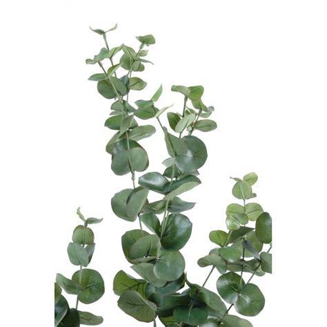 mur vegetal interieur pas cher mur vegetal interieur pas cher homesus net