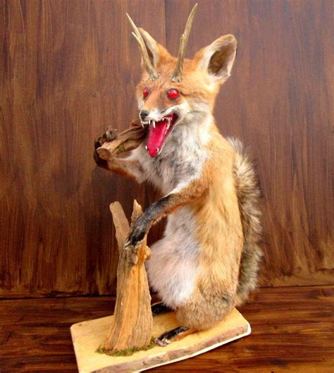 Kangaroo Court crappy taxidermy 1075 x 1200 · jpeg