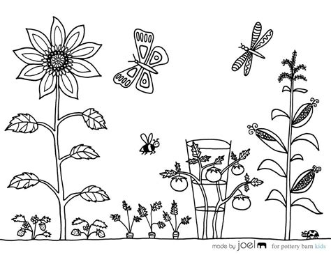 vegetable garden coloring sheet   joel