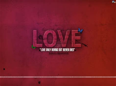 cute love wallpapers  quotes
