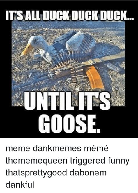 Silly Goose Meme - goose meme 28 images geese meme related keywords geese meme long tail i had an awesome