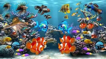 Fish Aquarium 3d Tank Screensaver Wallpapers Screensavers