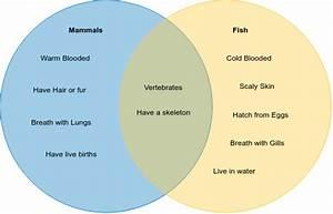 How To Use A Venn Diagram