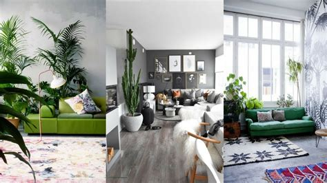 decorate living room with indoor plants greenery living
